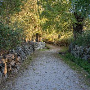 Ruta de las Callejas